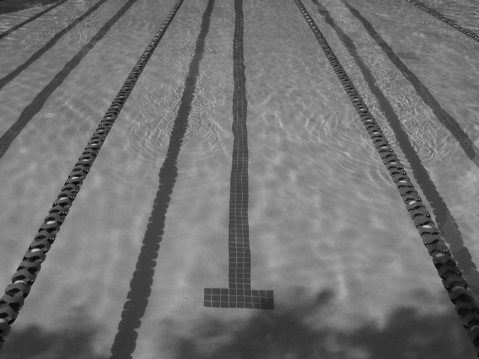 Swimming pool lane lines background Background Free Image Of Swimming Pool Lane Lines Background Ropes Ropes Daksh An Underwater View Of The Masterfile Swimming Pool Lane Lines Background Ropes Ropes Daksh An Underwater